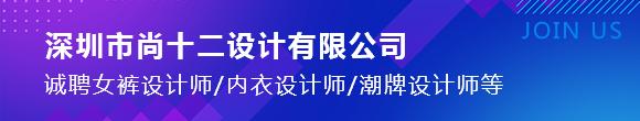 深圳市尚十二设计服务有限公司